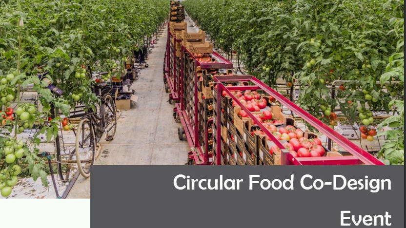 Circular Food Co - Design  Event