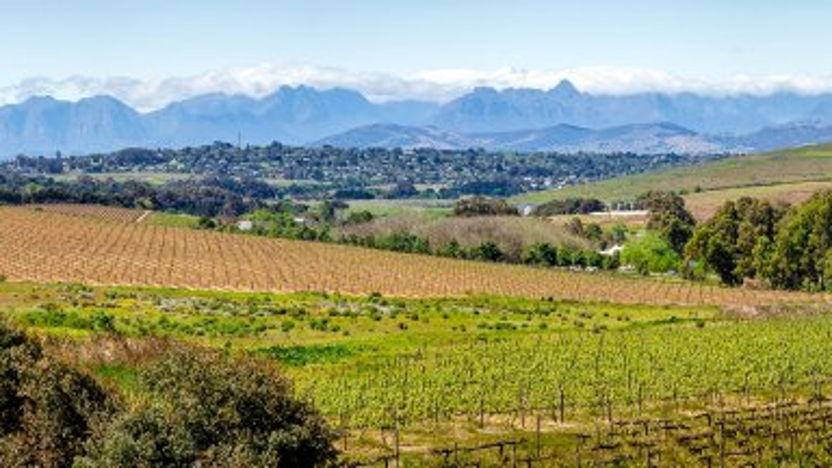 Kennis en Technologie Innovatiemissie Zuid-Afrika: klimaatslimme en duurzame landbouw