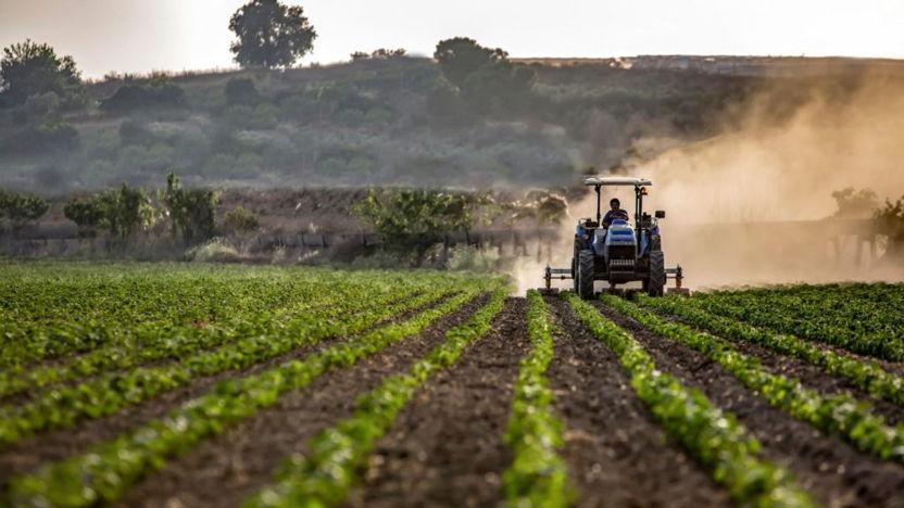 Virtuele handelsmissie tuinbouw Mexico met minister Schouten