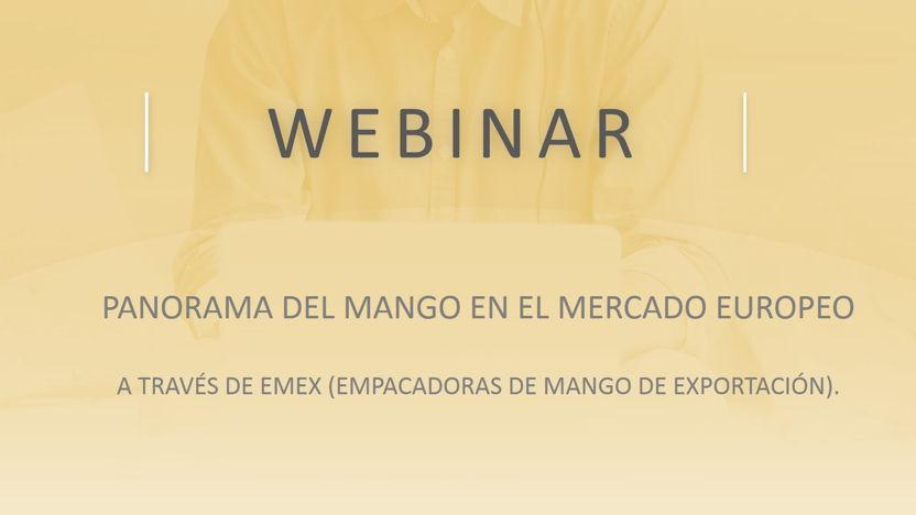 Webinar: Panorama of the Mango within the European market
