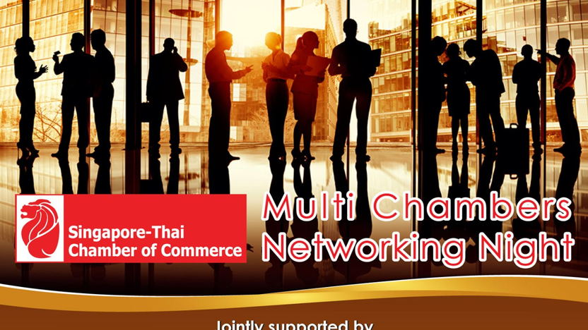 Multi Chambers Networking Night