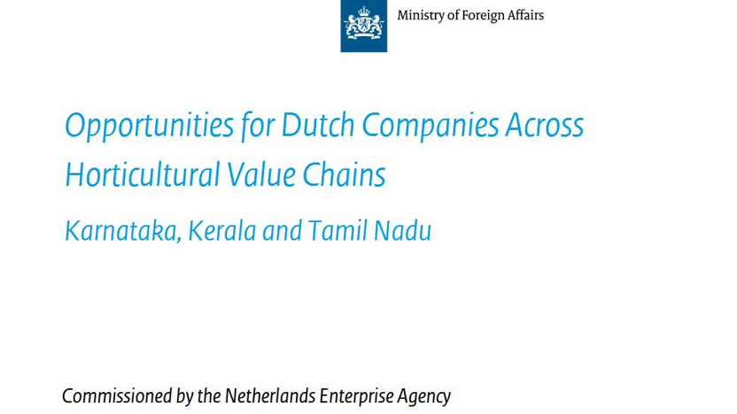 Opportunities for Dutch Companies Across Horticultural Value Chains