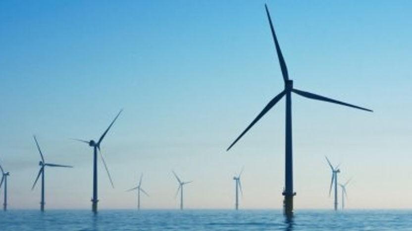 Digitale handelsmissie Wind op Zee Ierland
