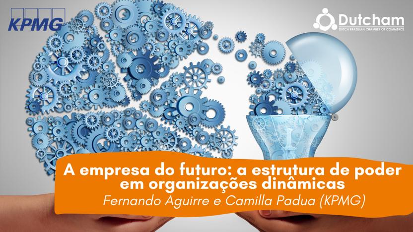 A empresa do futuro: a estrutura de poder em organizações dinâmicas