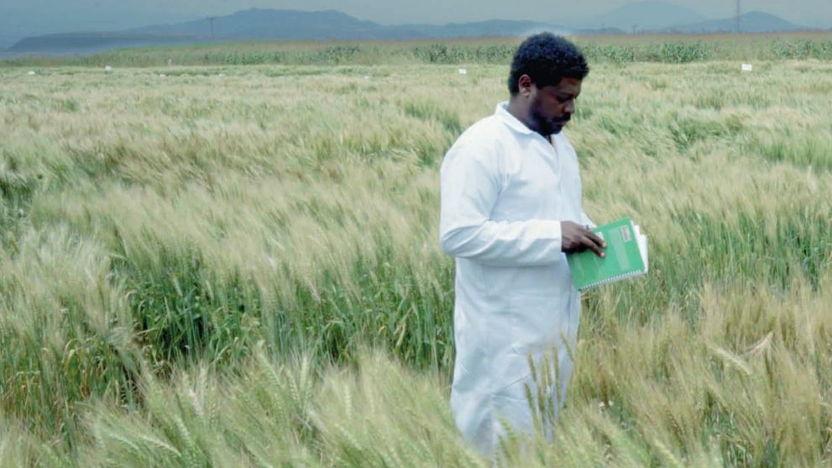 IM&NA Ethiopia Public Seed Sector Service