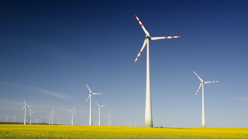 Nederlandse Windsector - Internationale sector plannen post Corona
