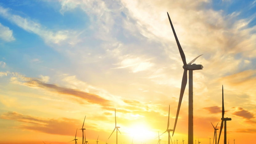 Expert Session on Offshore Wind & Ports in Poland