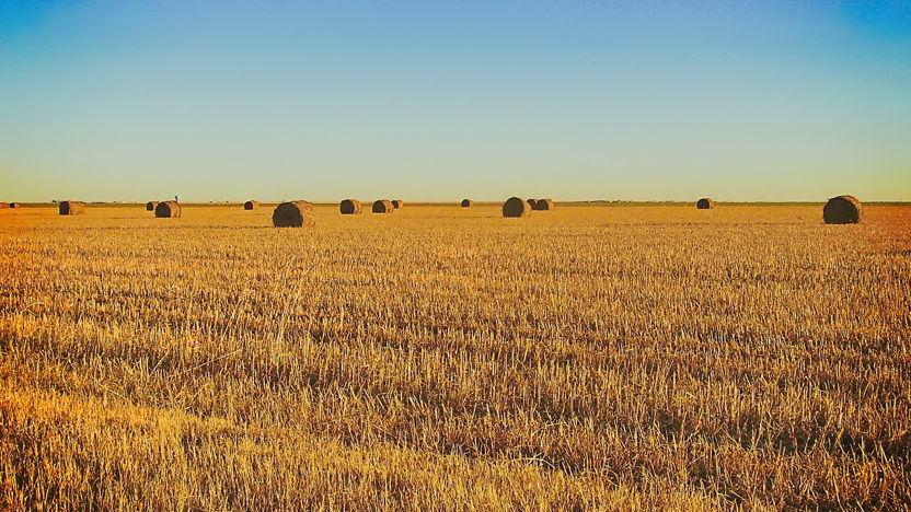 Landbouwtechnologie in Texas