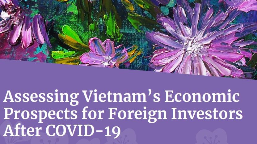 Assessing Vietnam's Economic Prospects for Foreign Investors After COVID-19