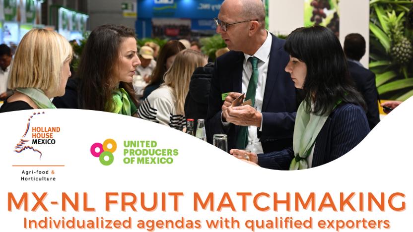 Virtual B2B MX-NL Fruit Matchmaking Program for Dutch and European Importers
