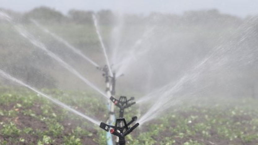 Opportunities for Dutch Businesses in Water Management in Mexican Agriculture